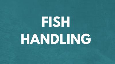 Fish Handling - Fish Right, Eat Right Tutorial 5