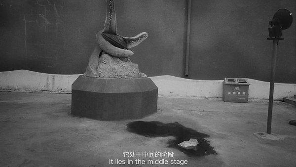 Tang Nannan Interview