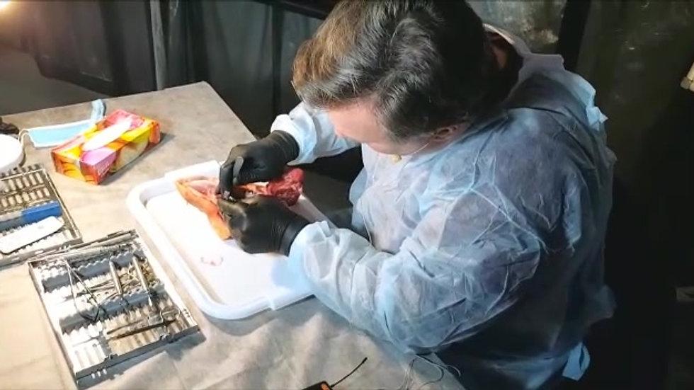 Ерохин А.И. - Хирургический курс по пародонтологии