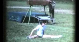 Saggio 1972