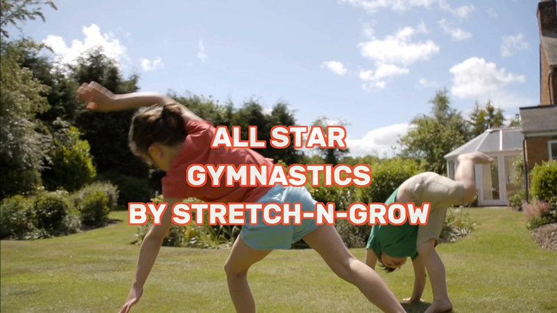 All Star Gymnastics