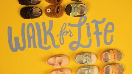 Walk for Life Stop Motion