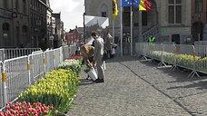 Tulpenpluk Oostende - Nieuwsreportage