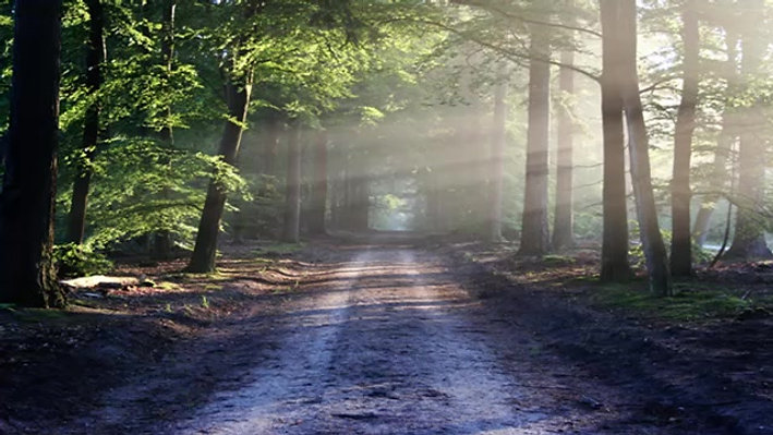 Walk With Jesus and Knowing Him