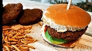 Blue Tenebrio Burger