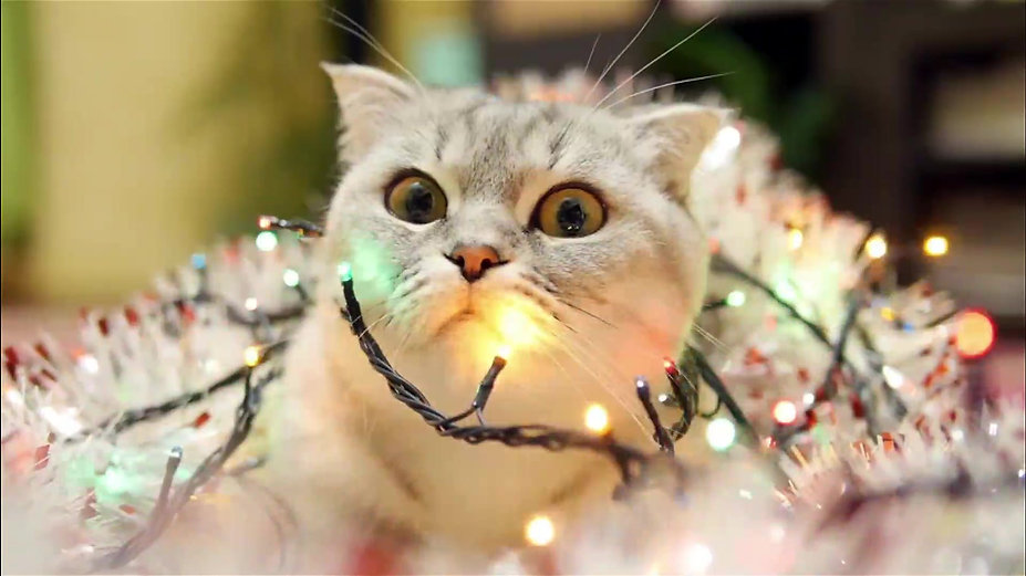 Making Christmas Interesting!