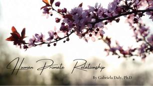 Human-Primate Relationship