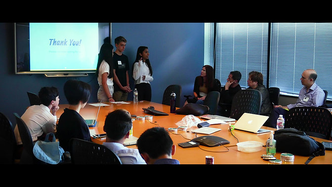 11 Second Intro to NIMBLE Startup Camp