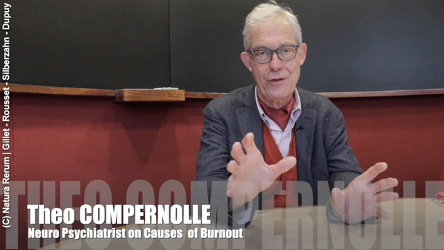 COMPERNOLLE 1 CAUSES OF BURNOUT - LIM En