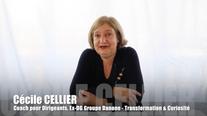 Cecile CELLIER Transformation Complexité et Curiosité