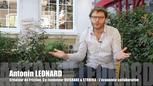 Antonin Leonard 1 Economie Collaborative