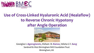 8 - Georgious Argoriannis Use of cross-linked hyaluronic acid (Healaflow) to reverse chronic hypotony after angle operation