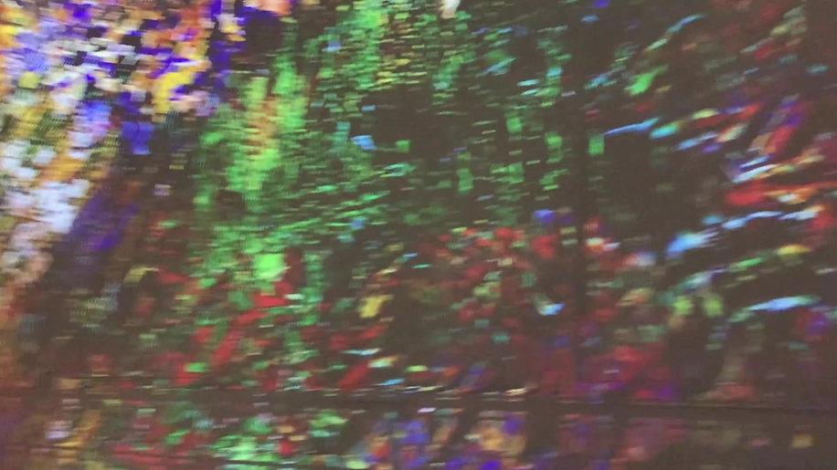 Van Gogh flowers big room