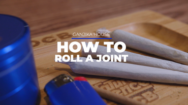 Ganjika House How To Roll A Joint