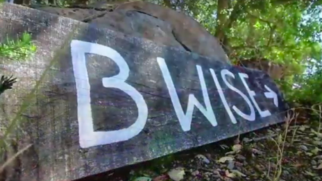 B Wise Winery Tour