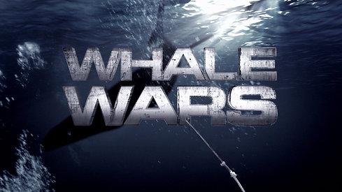 Whale Wars Promo