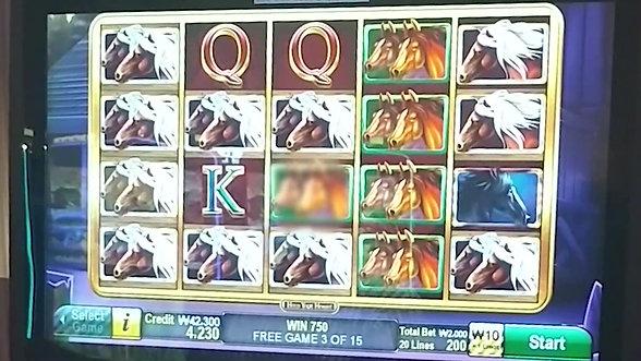 강원랜드 슬롯머신🐴Hold Your Horses🐴 Slot Machine Bonus nice win!