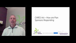 Plan Sponsor Reactions to CARES Act