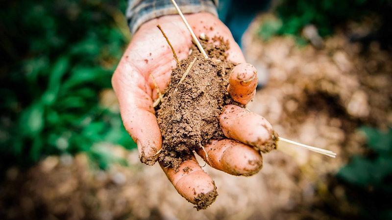 En-Soil University Channel