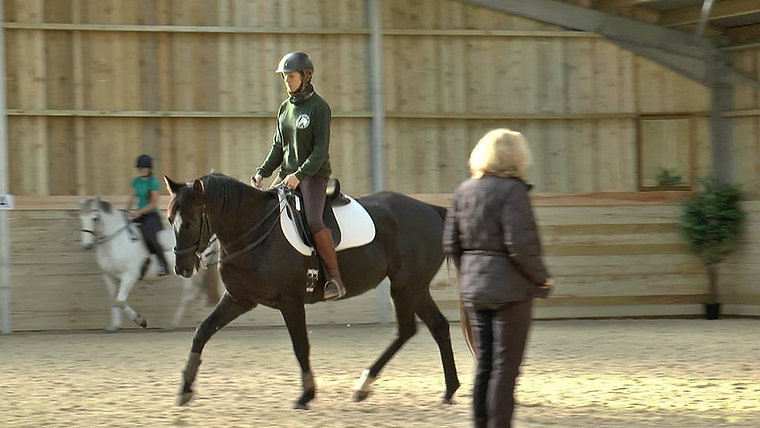 Online Classical Riding Academy: free previews