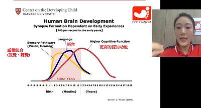 幼兒腦部、語言、認知及情緒發展網上講座