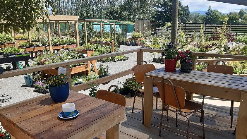 Back Paddock Garden on Facebook Watch