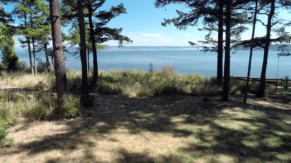 Offer a Whidbey Island lot or acreage