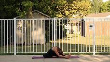 Beginning Yoga Basics - Introduction Video One