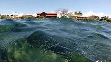 Underwater neighbours