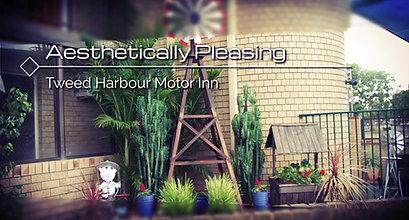 Tweed Motel facebook video