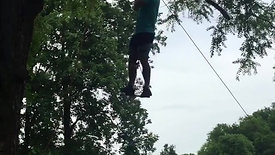 Up Up and away Noah