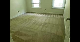 Carpet Projects Vol. 2