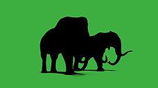 GreenScreen Mammuts Silhouette