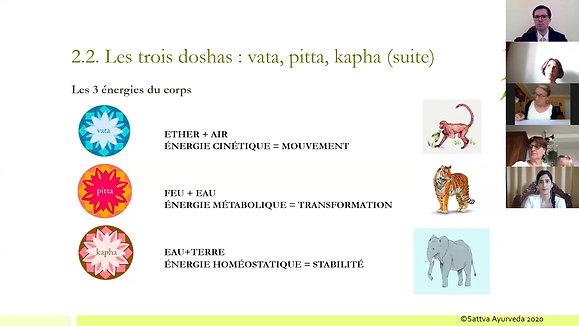 Session 1 - Présentation de l'Ayurveda