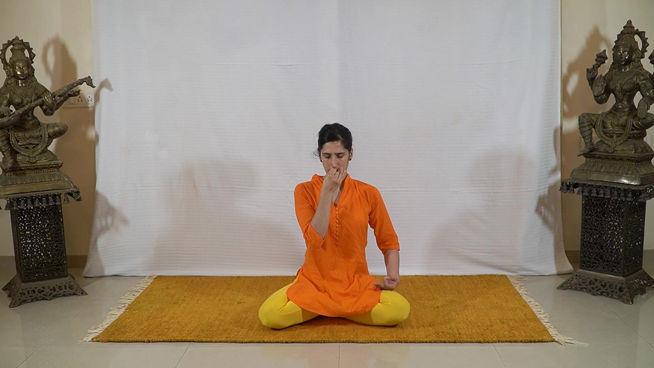 Séance de Yoga - 30 minutes