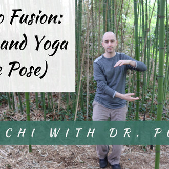 Bamboo Fusion: Tai Chi and Yoga (Warrior I)