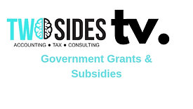 Government Grants & Subsidies