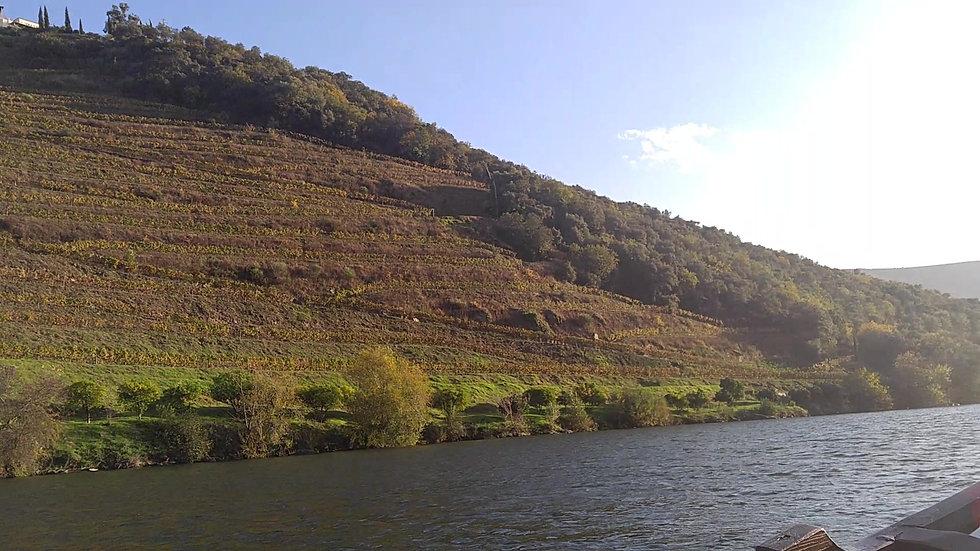 Douro River Sailing
