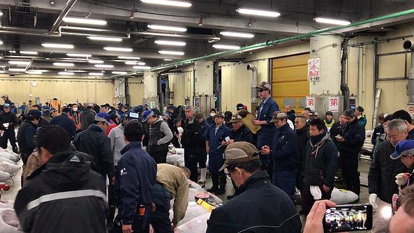 Tuna auctions, Tsukiji Market, Tokyo, Japan