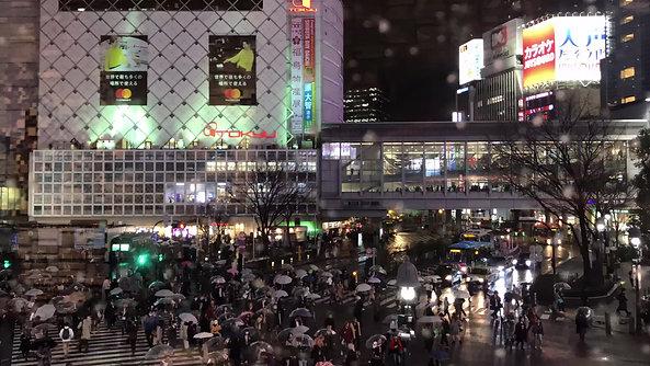 Shibuya Intersection, Tokyo, Japan