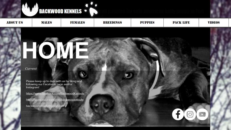 Backwood Kennels