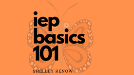 IEP Basics 101