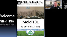 Mold 101 - 1st Class - Mold Basics