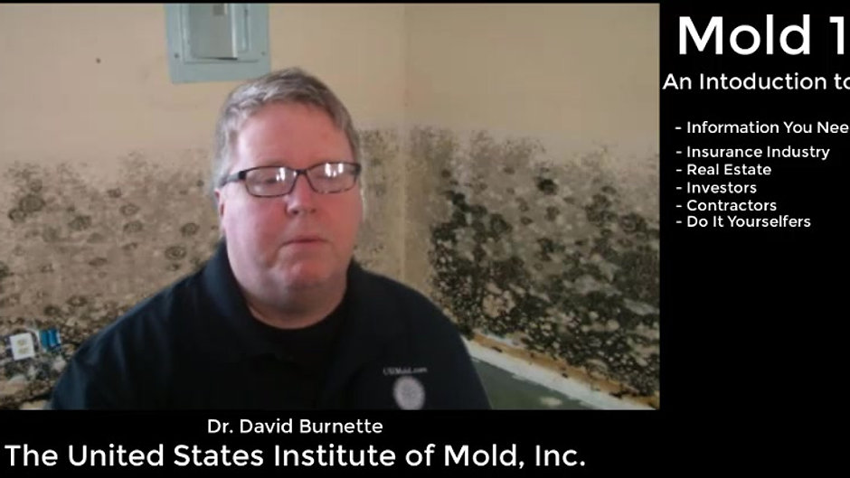 Mold 101 - An Introduction to Mold