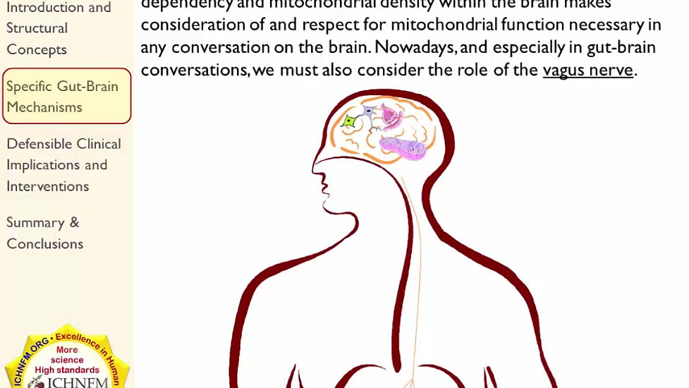 Gut-Brain Axis: Part 1, Context and Mechanisms