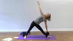 Jill Ganassi Iyengar Level 2: 4/15/20