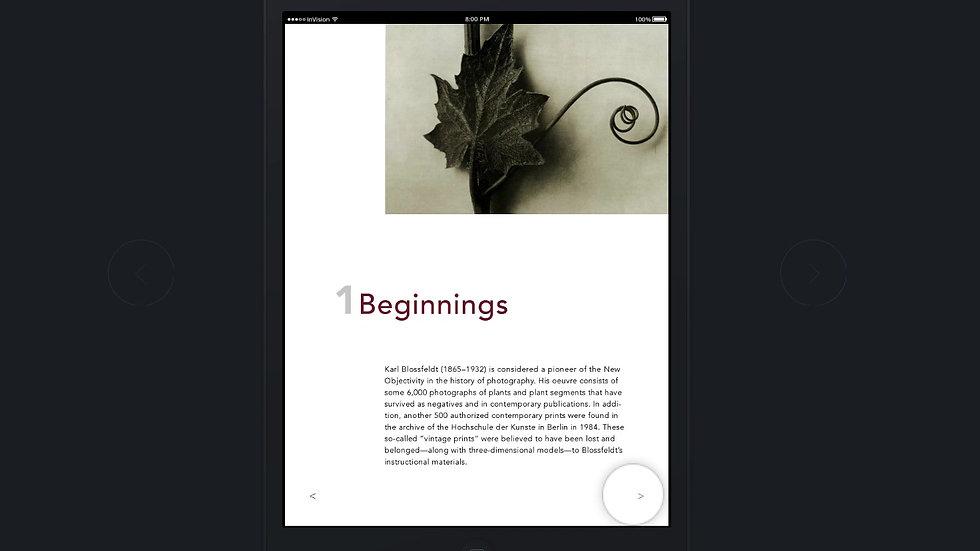 NatureAsArt_E-Book