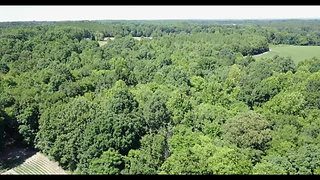 58 Acres Hatley Burris Road