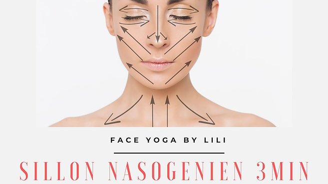 Sillon Nasogénien (Français) - 5 € / R$35