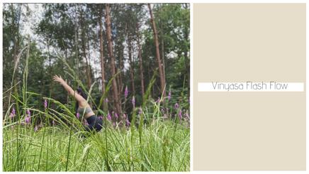 09122020 - Vinyasa Flash Flow (30 minutes) - Thrird Eye Chakra